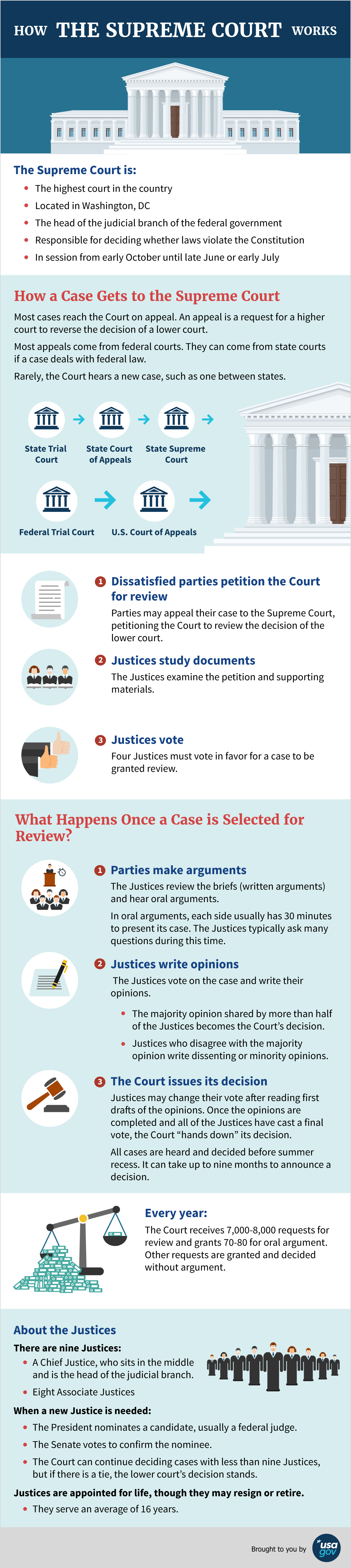 How the Supreme Court Works infographic. See description below.